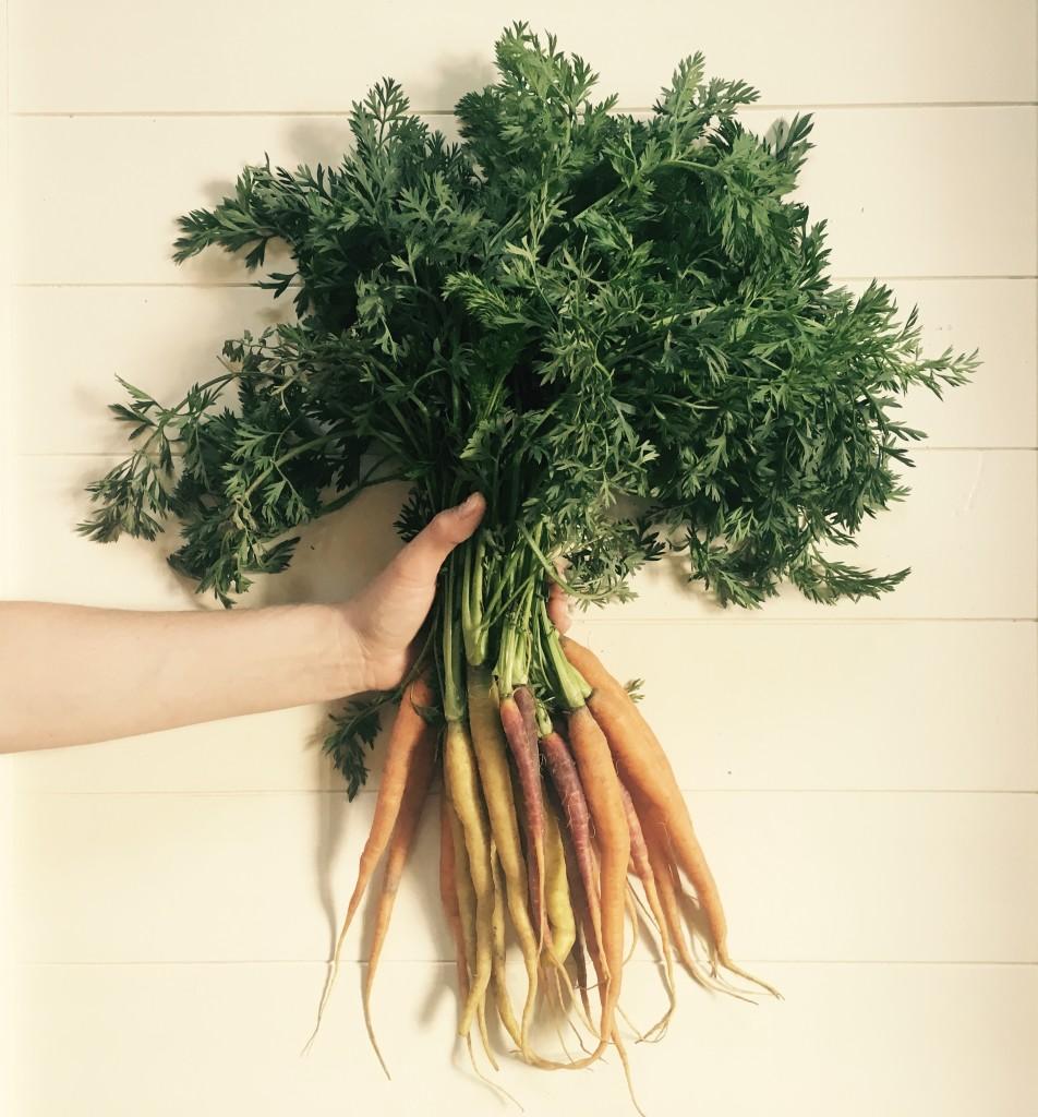 Marysia kupuje nam często warzywa na targu, amarchew serwuje nam zmiodem ikolendrą.