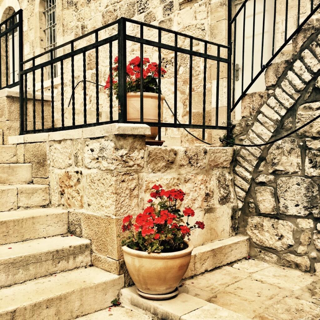 KKamień jerozolimski stanowi doskonałe tło dla barwnych kwietnych dekoracji.