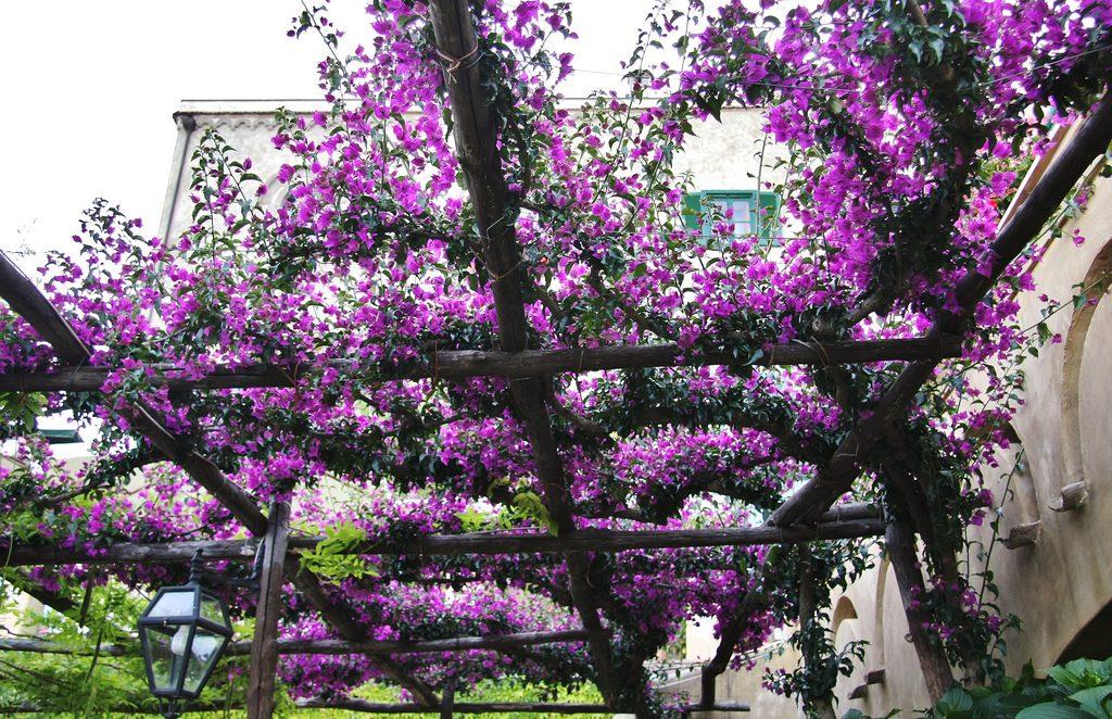 Villa Cimbrone, fot. Adrian Scottow / Flickr, CC BY-SA 2.0