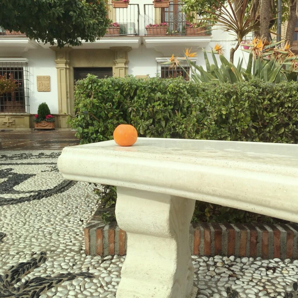 W Andaluzji na cześć drzewek pomarańczowych nazywa się place, ulice, skwery. Tu: Plaza de los Naranjos wMarbelli, wzimie, fot. Julia Wollner