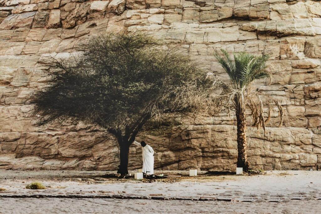 Abu Simbel, fot. / Flickr