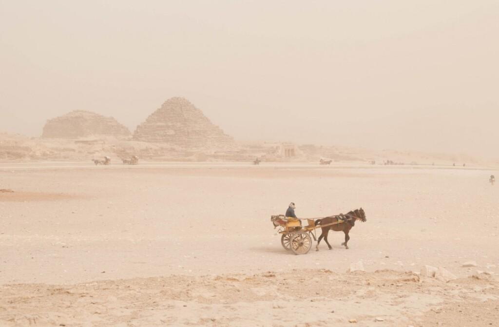 Pustynne wysypiska Sahary są kształtowane przez wiatr lub wyjątkowo rzadkie opady deszczu iobejmują piaszczyste wydmy ipola wydmowe lub morza piaskowe, płaskowyże kamienne, równiny żwirowe, suche doliny, suche jeziora. Fot. Anastasia Fomina