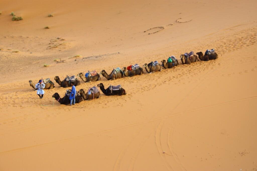 Sahara obejmuje swym zasięgiem 14 pustyń: Al-Dżuf, Erg Szasz, Erg Ikidi, Wielki Erg Wschodni, Wielki Erg Zachodni, Tadmait, Tanizruft, Hamada al-Hamra, Ahaggar, Tibesti, Tenere, Libijska, Bajuda, Arabska.