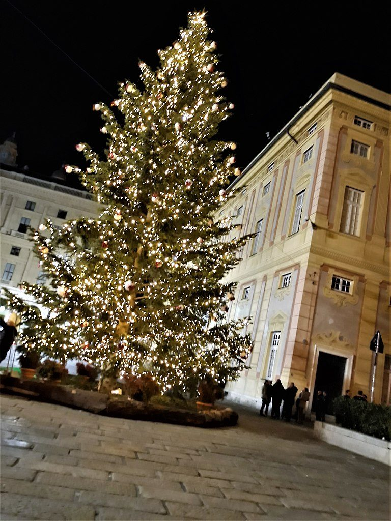 Choinka przy Palazzo Ducale wGenui