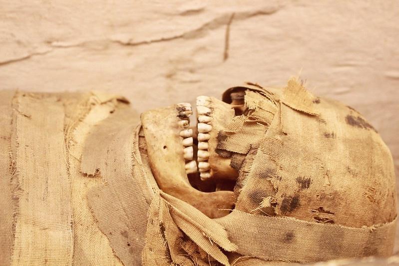 W kiepskim stanie pozostawało uzębienie Egipcjan, do czego przyczyniała się... wszechobecna pustynia. Drobiny piasku wdzierały się do pożywienia, głównie do pieczywa, powodując ścieranie się zębów iniszczenia szkliwa. Zły stan uzębienia starożytnych mieszkańców doliny Nilu znamy dzięki znajdowanym mumiom – niejednokrotnie brakuje im sporej części zębów lub są one bardzo zniszczone. Na zdjęciu: mumia młodej kobiety – na podstawie dobrze zachowanych zębów wnioskuje się, że wchwili śmierci nie miała więcej niż 25 lat. Fot. www.historicmysteries.com (Historic Mysteries)
