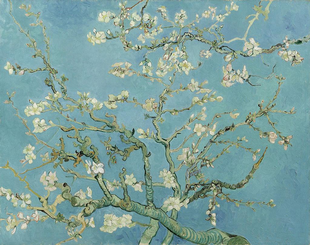 Vincent van Gogh, Kwitnący migdałowiec, 1890